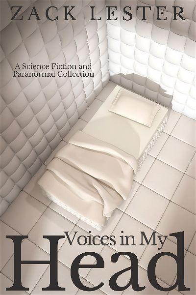 premade-padded-cell-book-cover-design.jpg