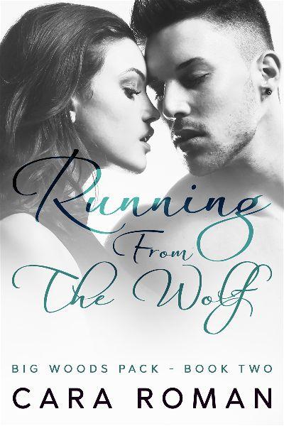 premade-romance-shifter-series-e-book-cover-design.jpg