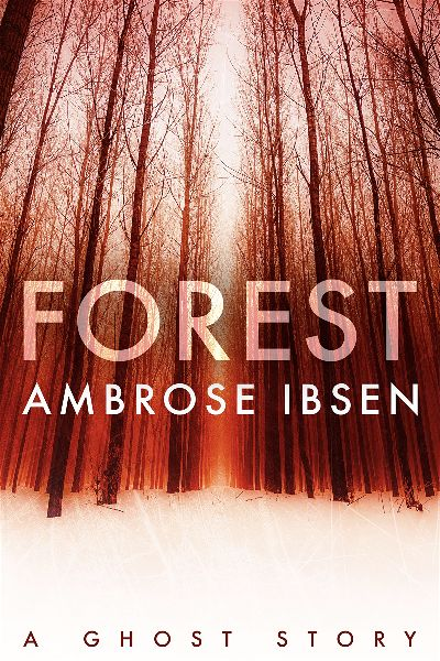 premade-series-horror-book-cover-design.jpg
