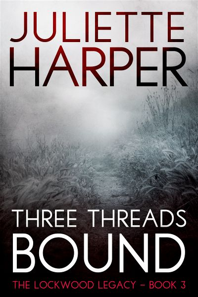 premade-thriller-series-match-book-cover-design.jpg
