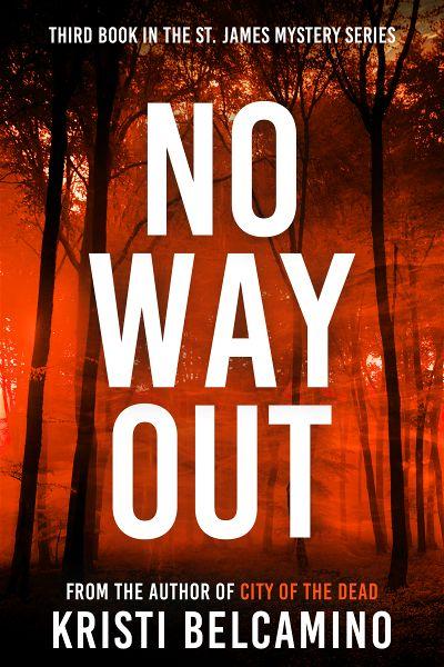premade-thriller-wood-series-e-book-cover-design.jpg
