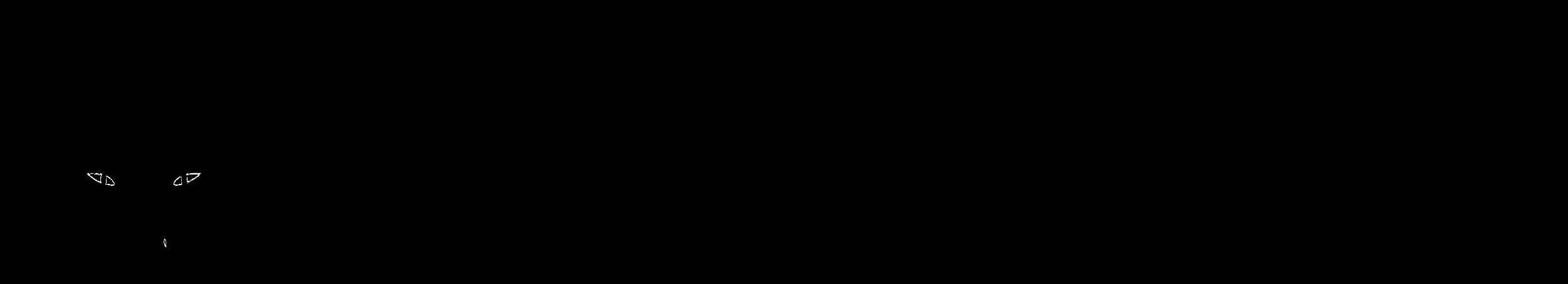 foxlogolargewatermark.png