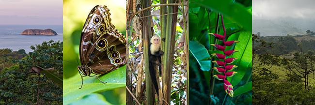 Costa Rica blogintro.jpg