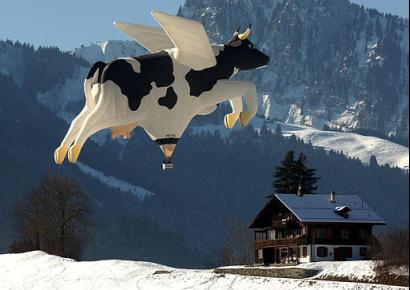 The family had a choice: Pay the children's college tuition or buy a hot air balloon that looks like a cow...