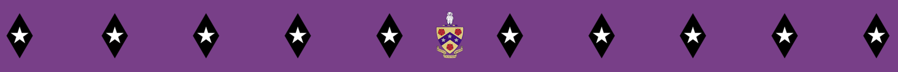Coat of arms and dimonds banner.png