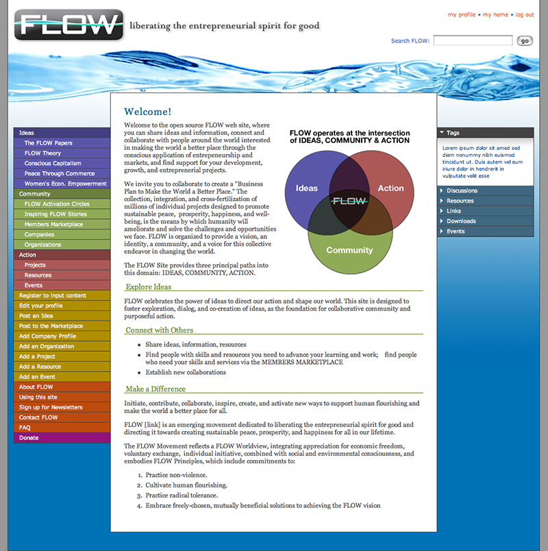 FLOW Networking Site
