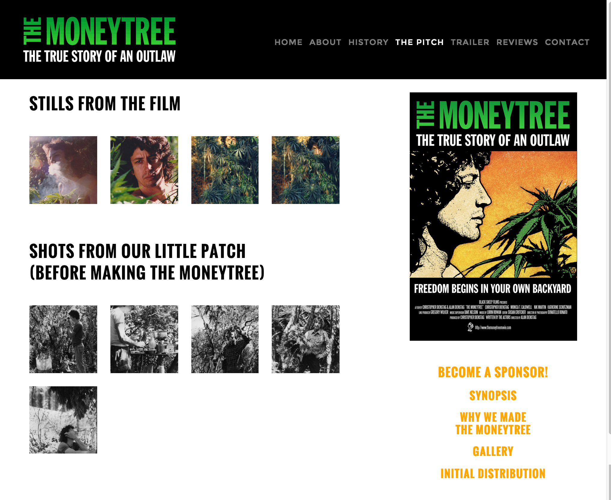 Gallery — The Moneytree.png