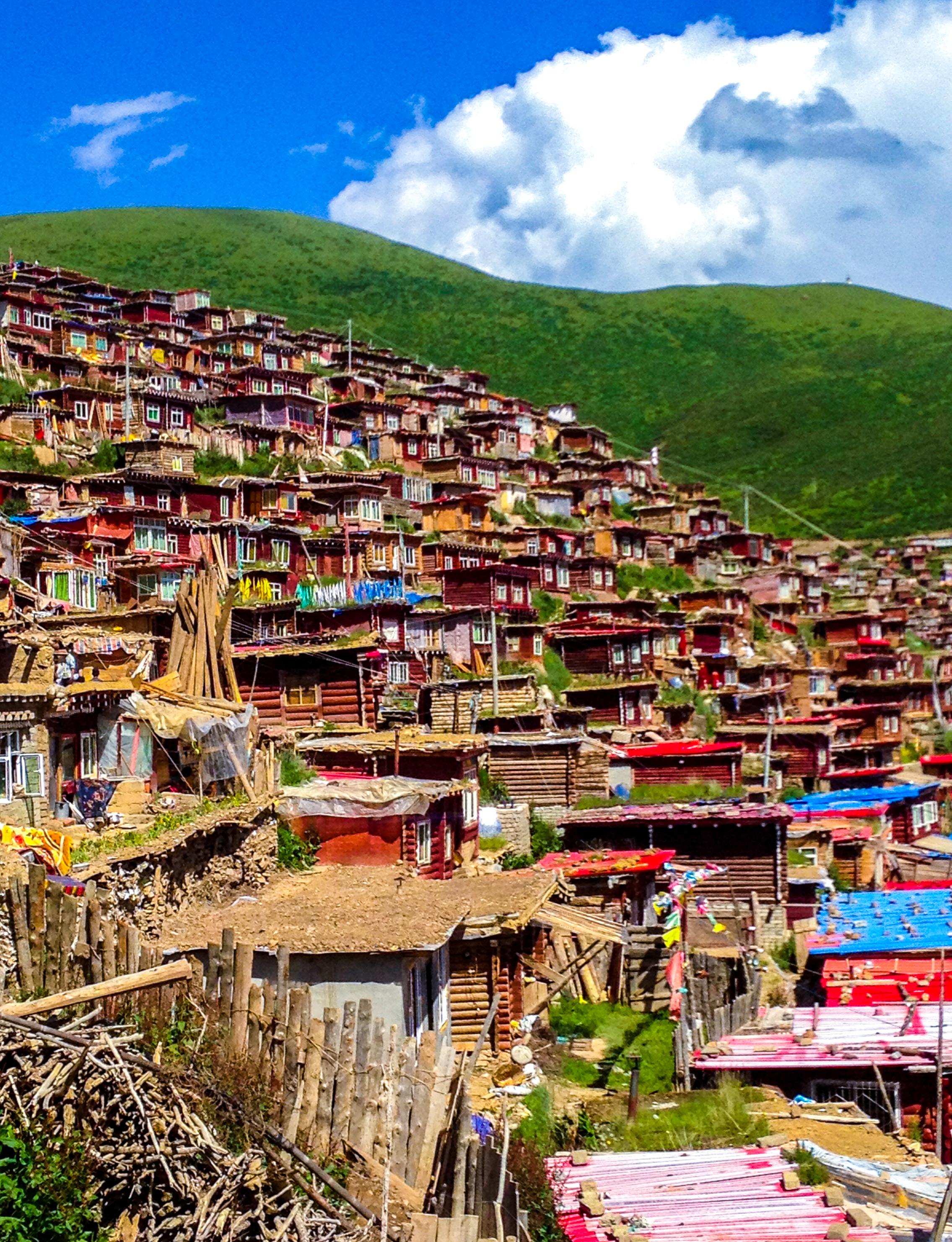 tibetZS-14.jpg