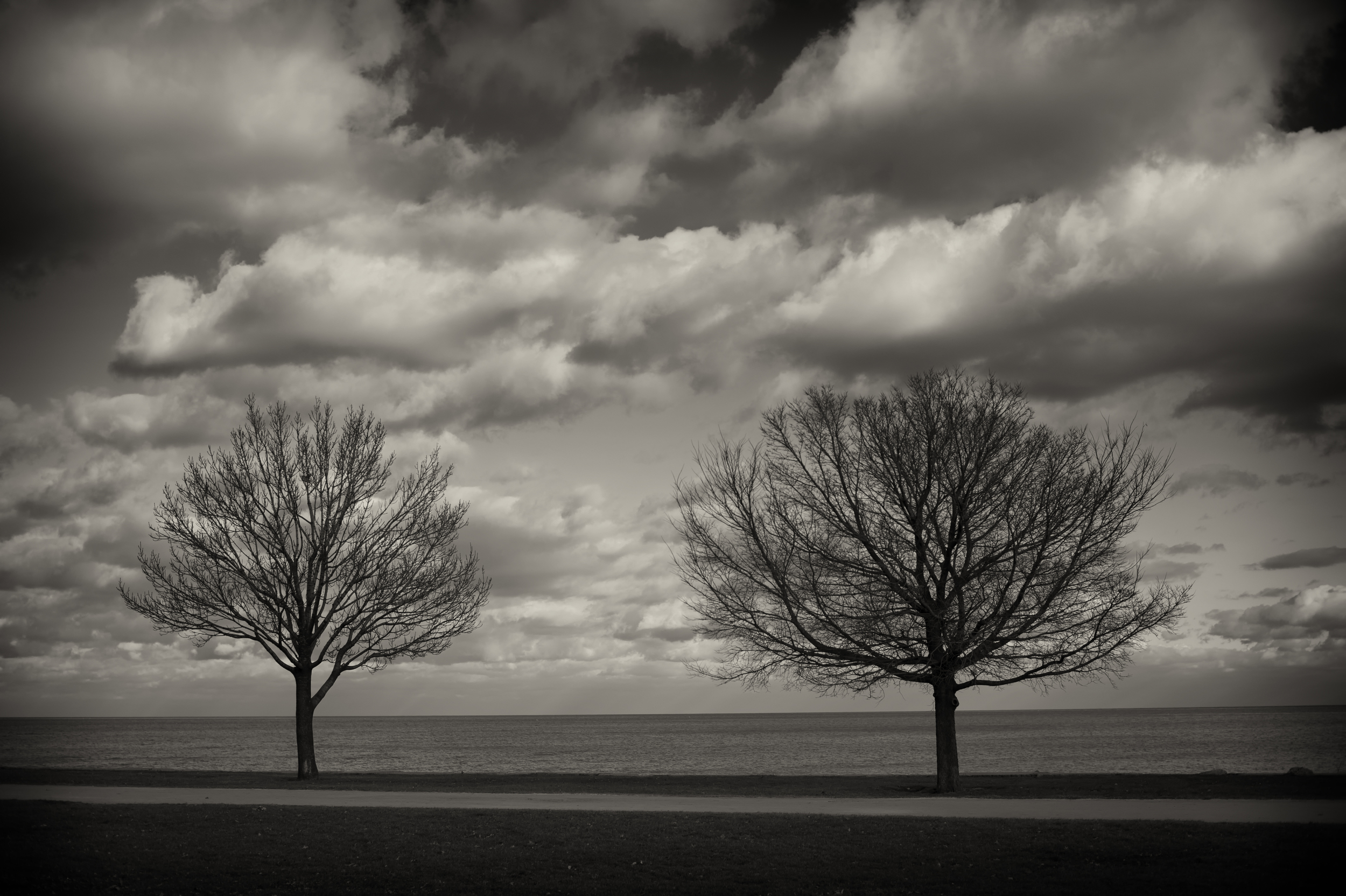 Chicago_Lakefront.jpg
