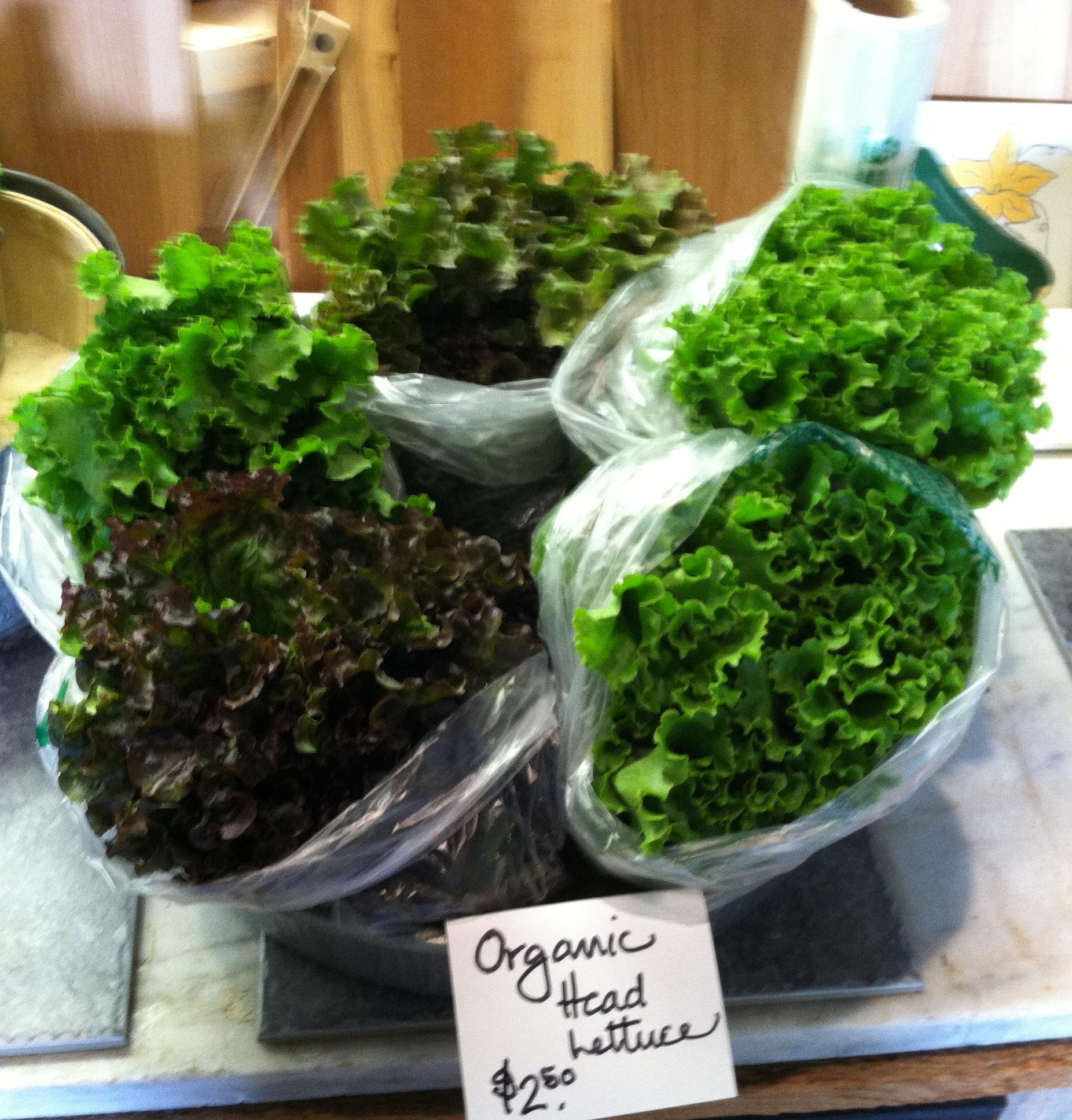 bags of lettuce.jpg