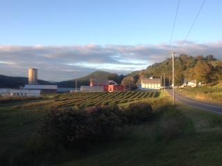 farm view Sept.jpg