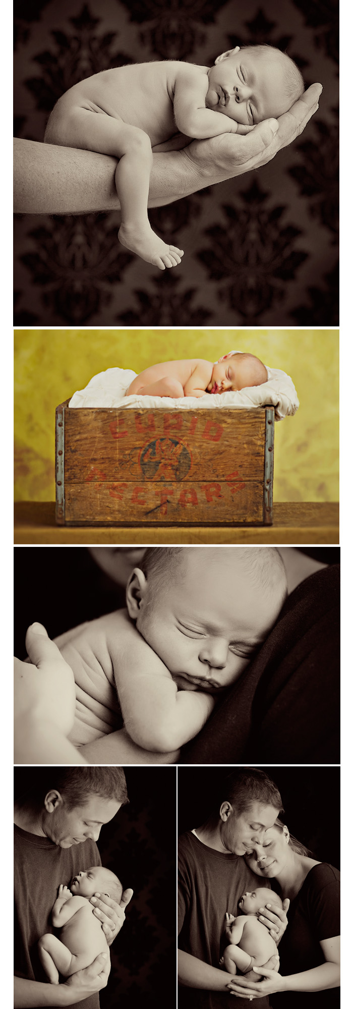 moynihan newborn photography.jpg