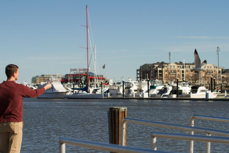 Inner-Harbor-Baltimore