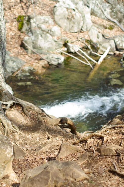 Rose-River-Trail
