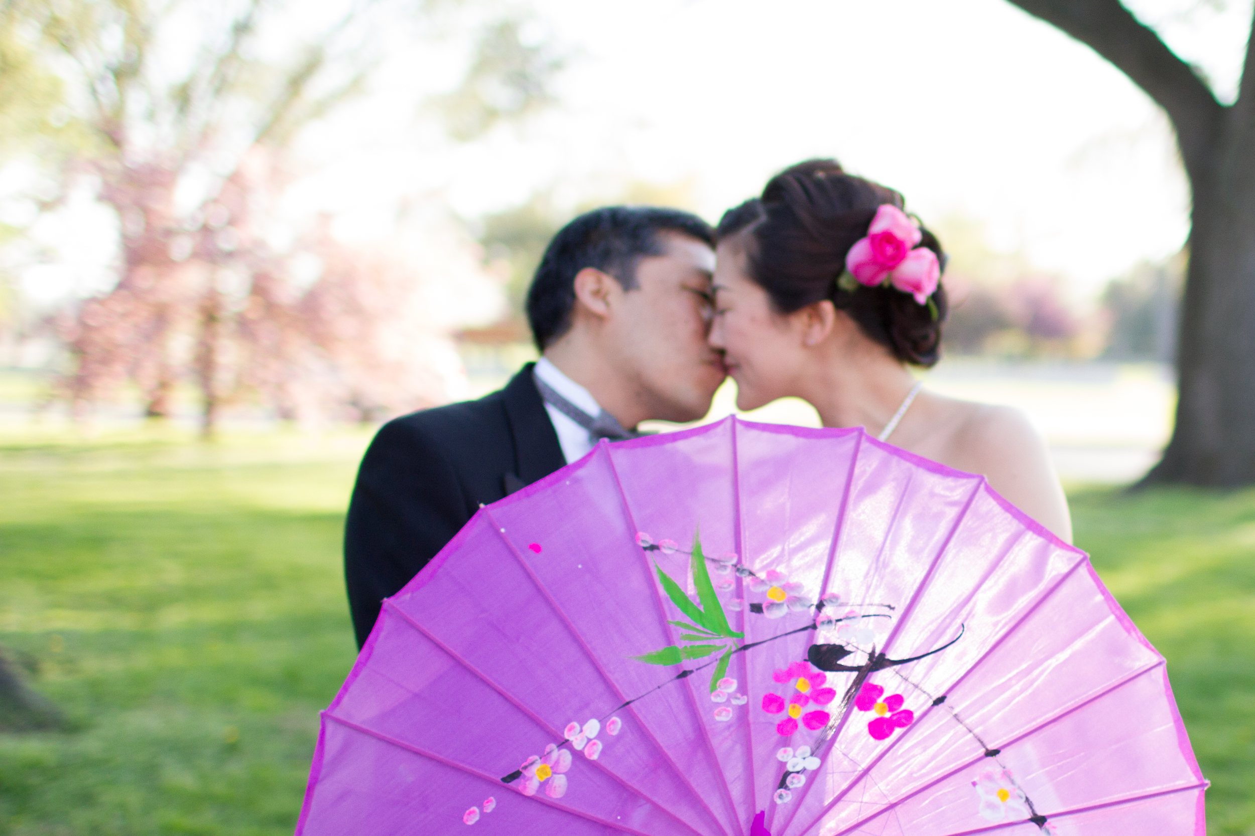 DC cherry blossom wedding