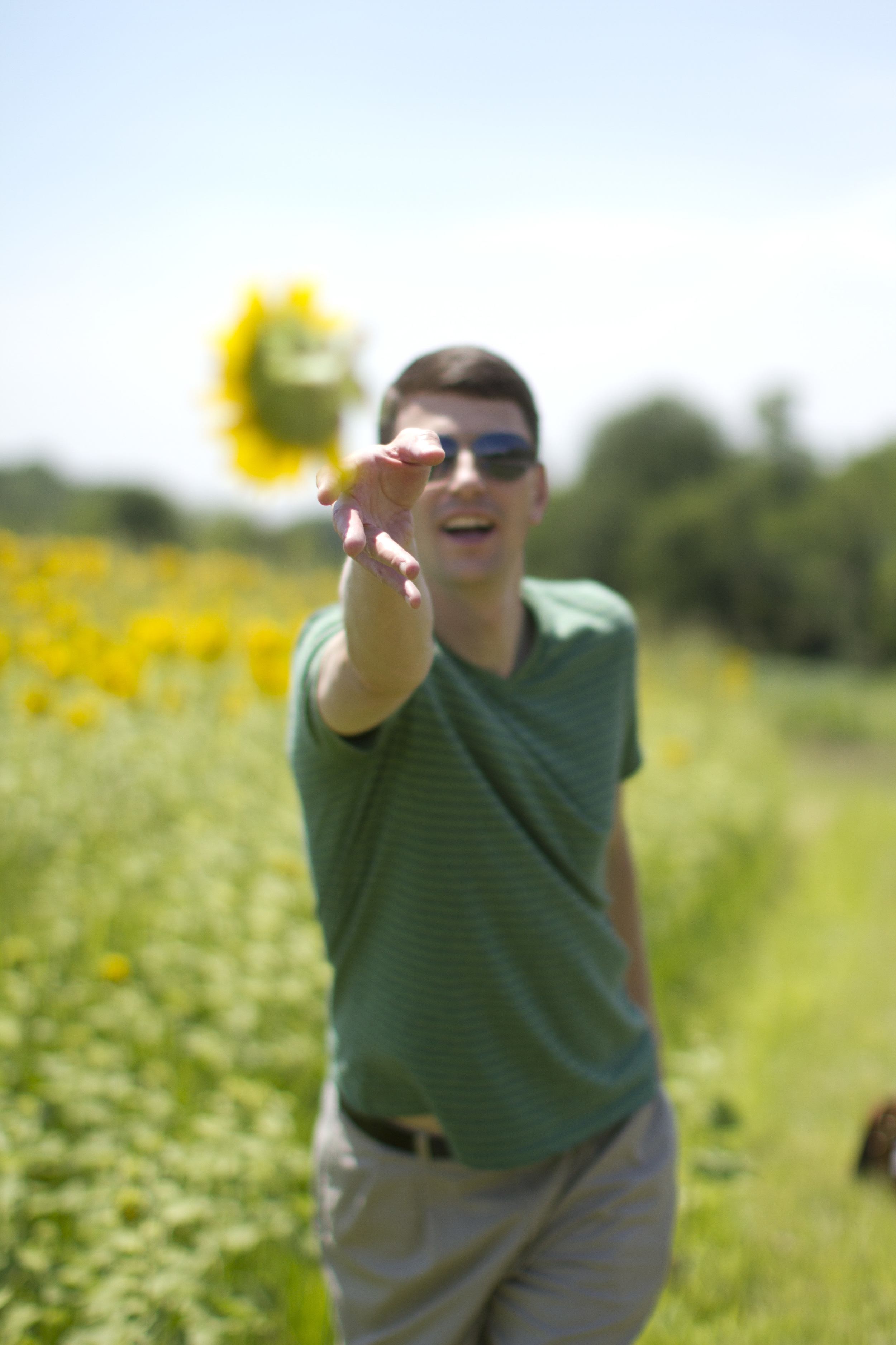 Sunflower-field-photo-session