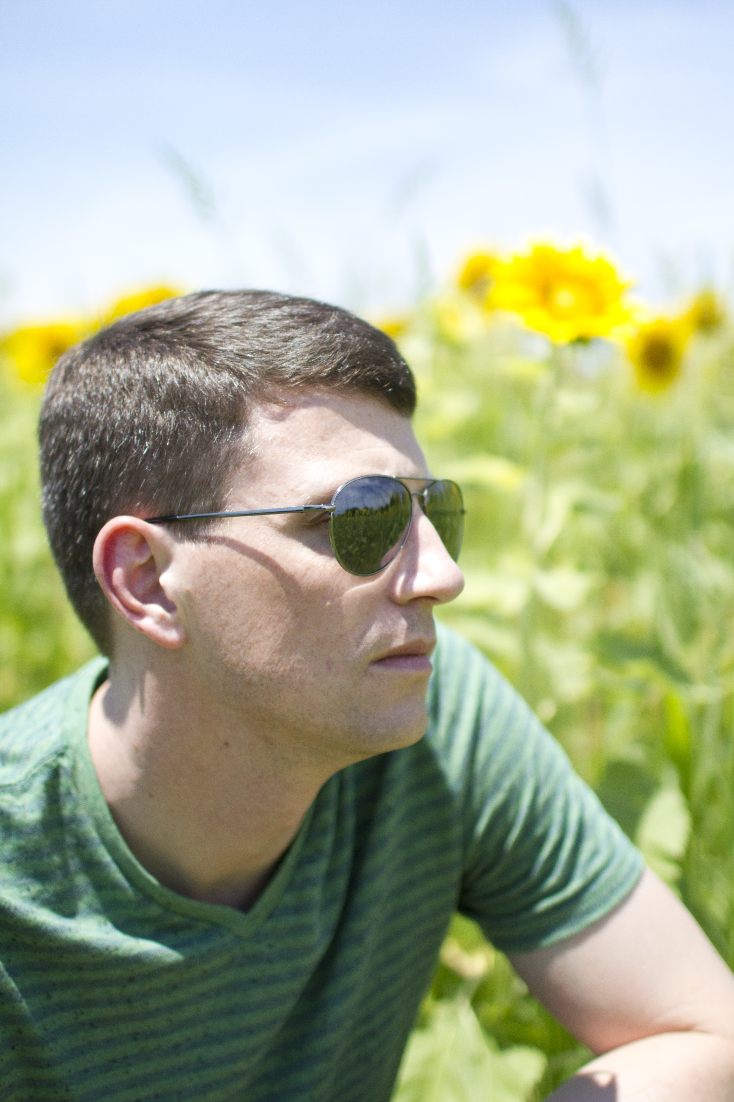 Sunflower-field-photography