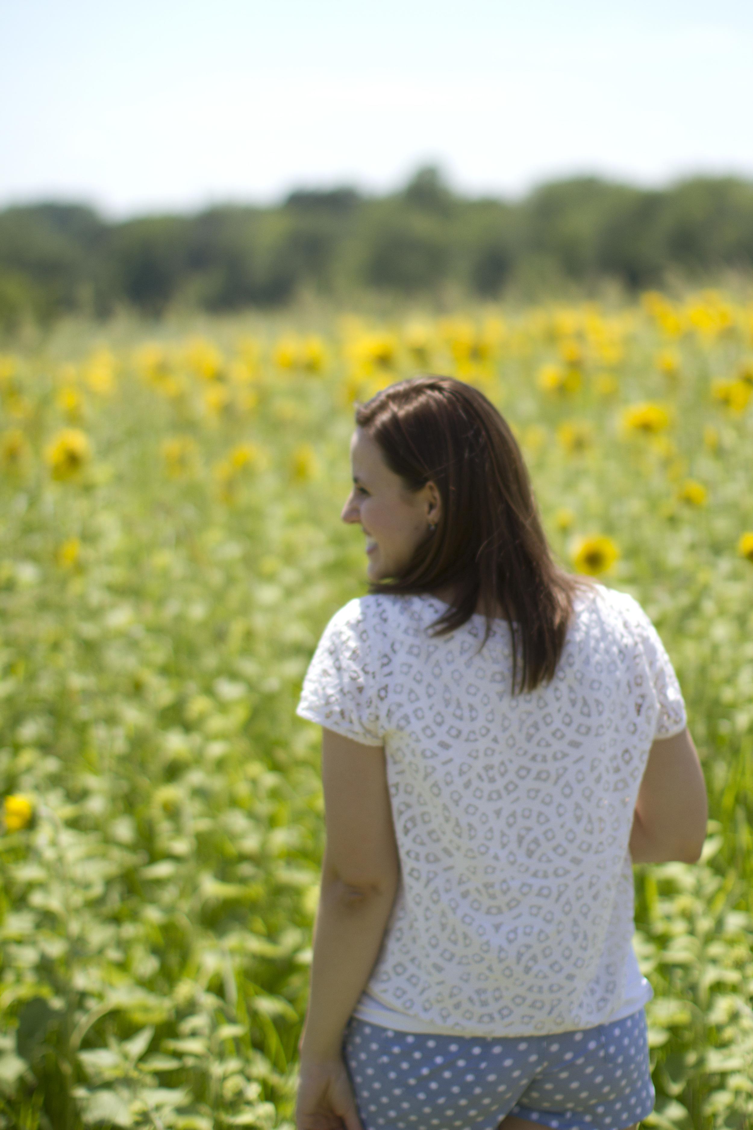 Sunflower-field-West-Chester-Ohio