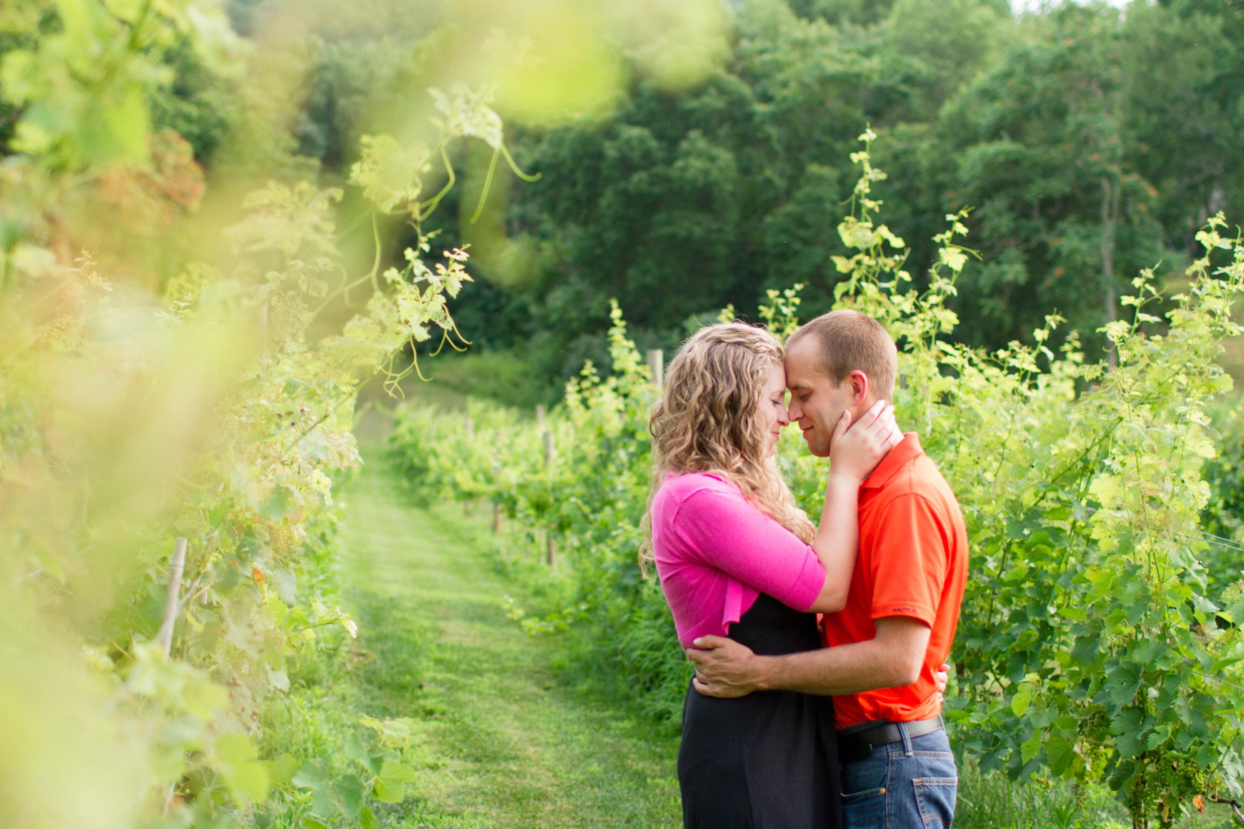 Northern Virginia winery photos