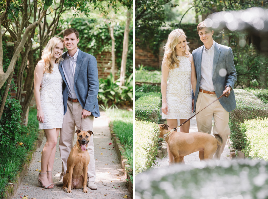 engagements with dog