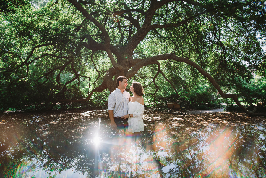 live oak tree columbia