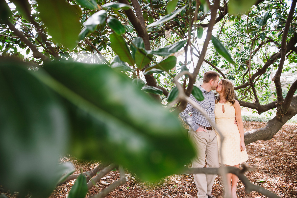 magnolia tree engagement session