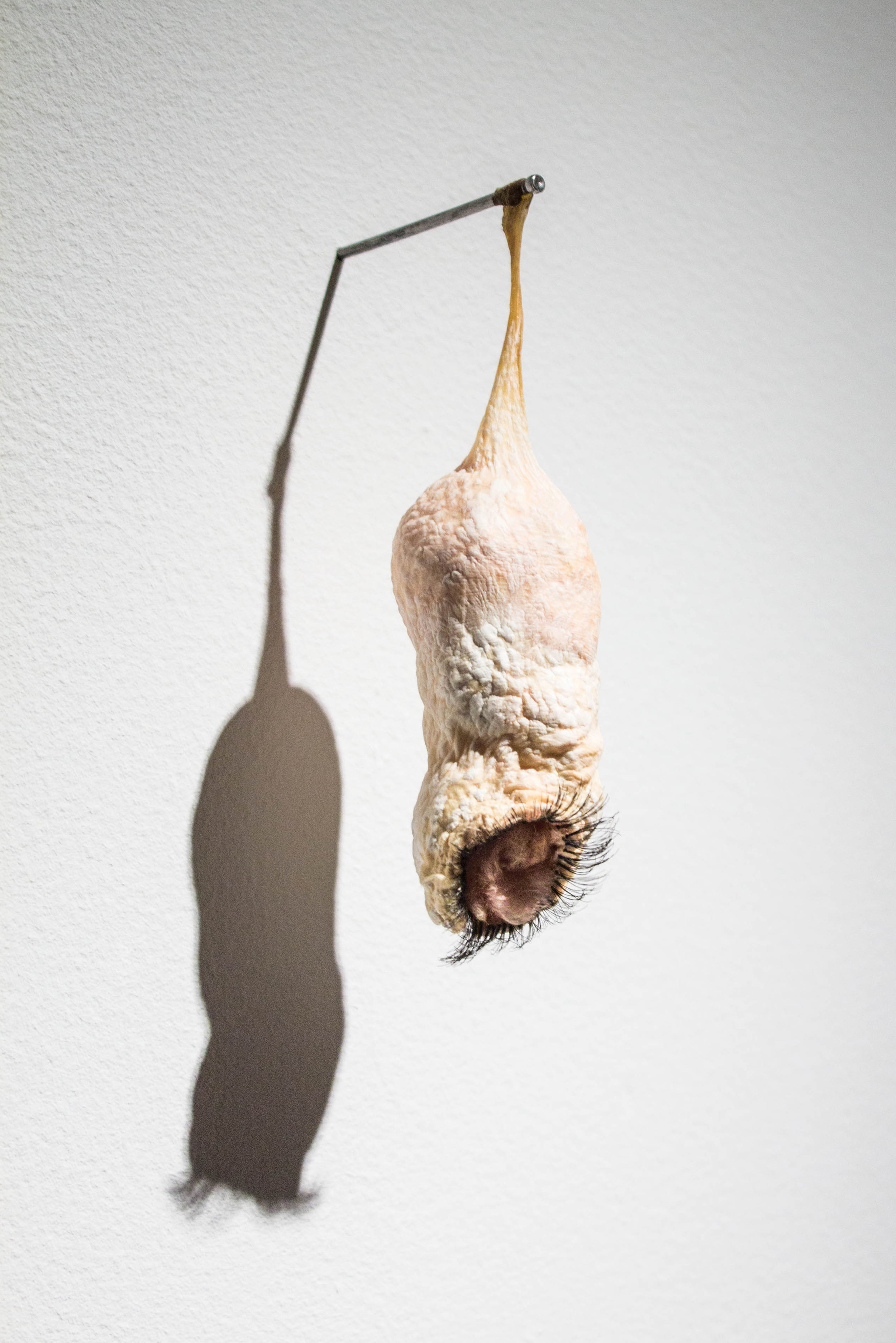 "Dangle  - 2013 - beef intestine, fiberglass insulation, and false eyelashes - 6"" x 2"" x 2"""