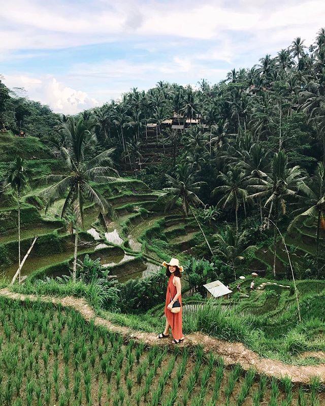 All ready to paddy it up in Bali 🙌🏻 #paddyanimalsgonewild