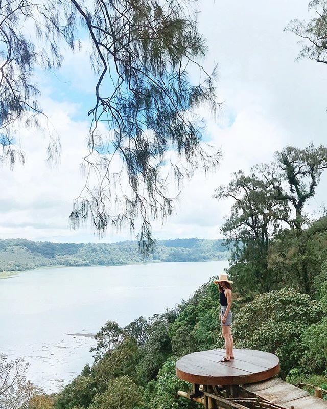 Looking for Nasi Goreng 🌶🌶 #paddyanimalsgonewild