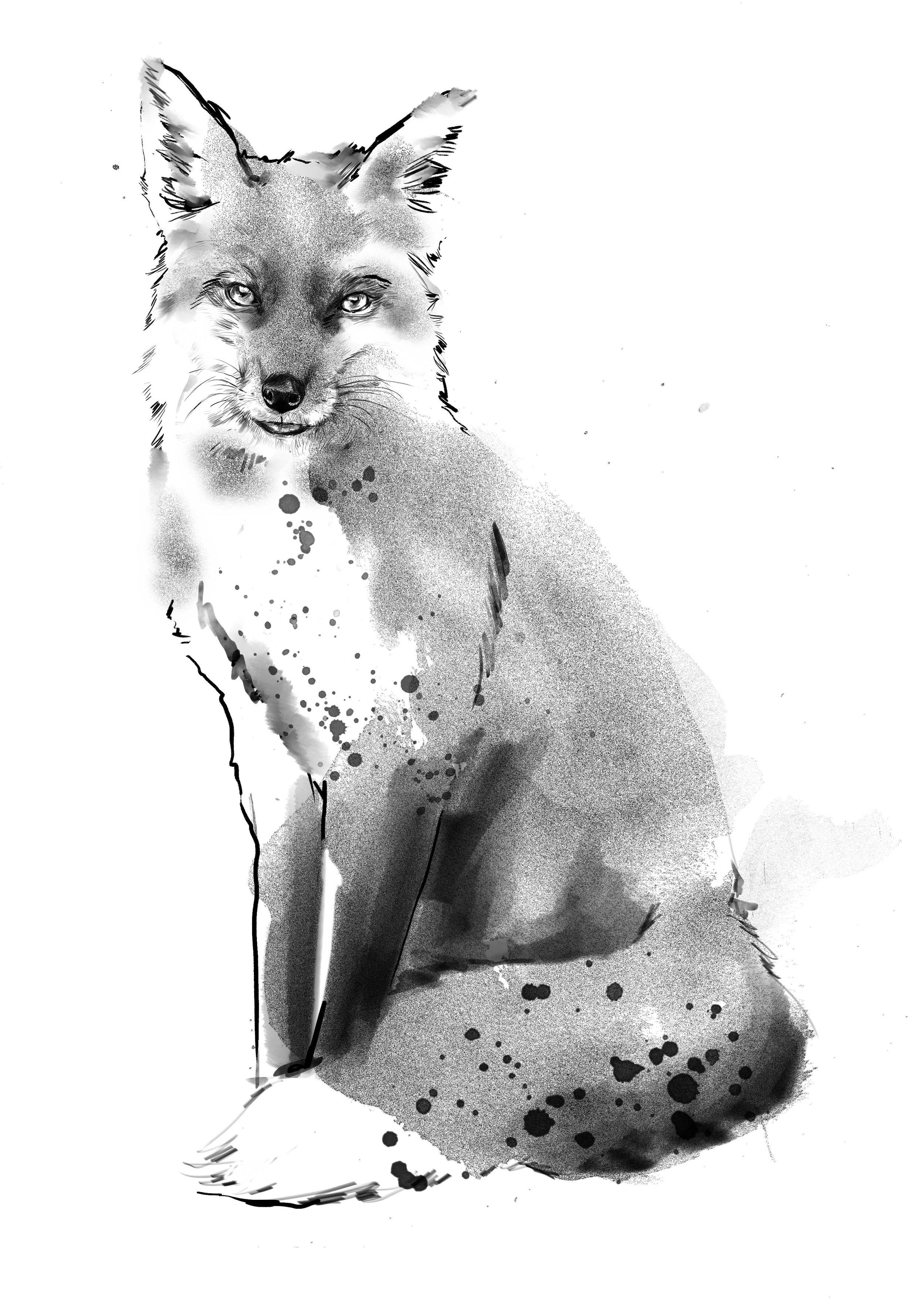 FOXY-2.jpg