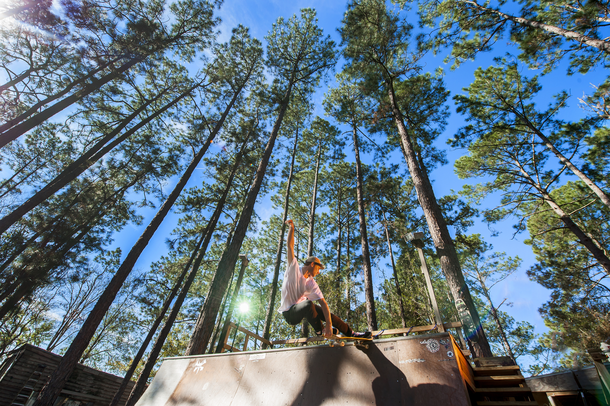 Tall Trees & Tail Slides