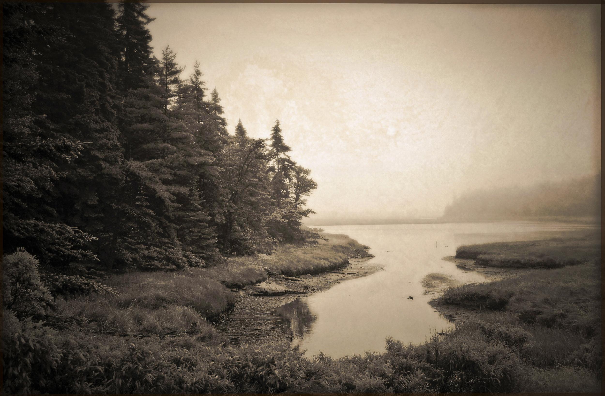 Reid Marsh   Georgetown, Maine