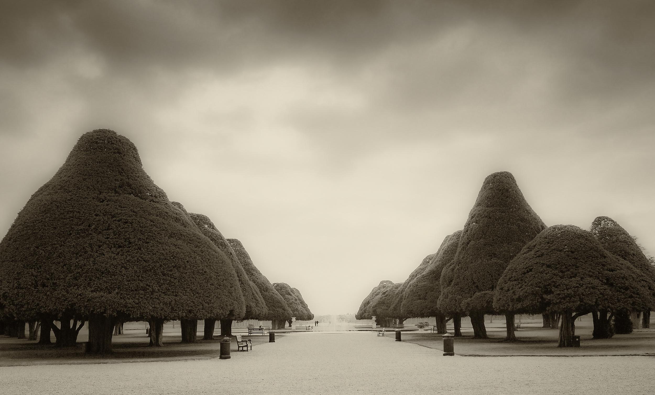 Here, Perhaps   Hampton Court, England