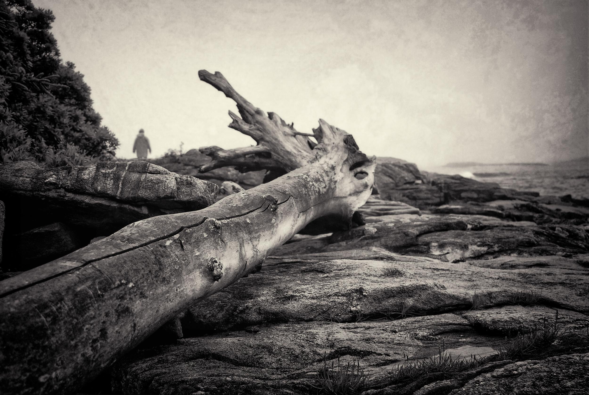 Ashore   Georgetown, Maine