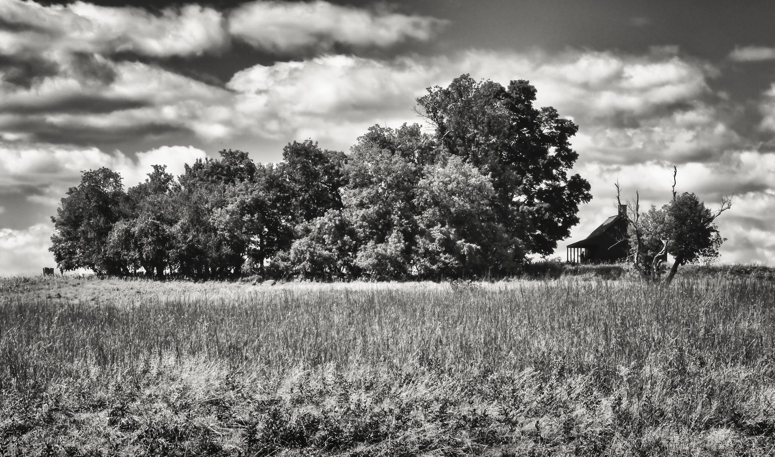 Neilson Farm   Saratoga National Historic Park