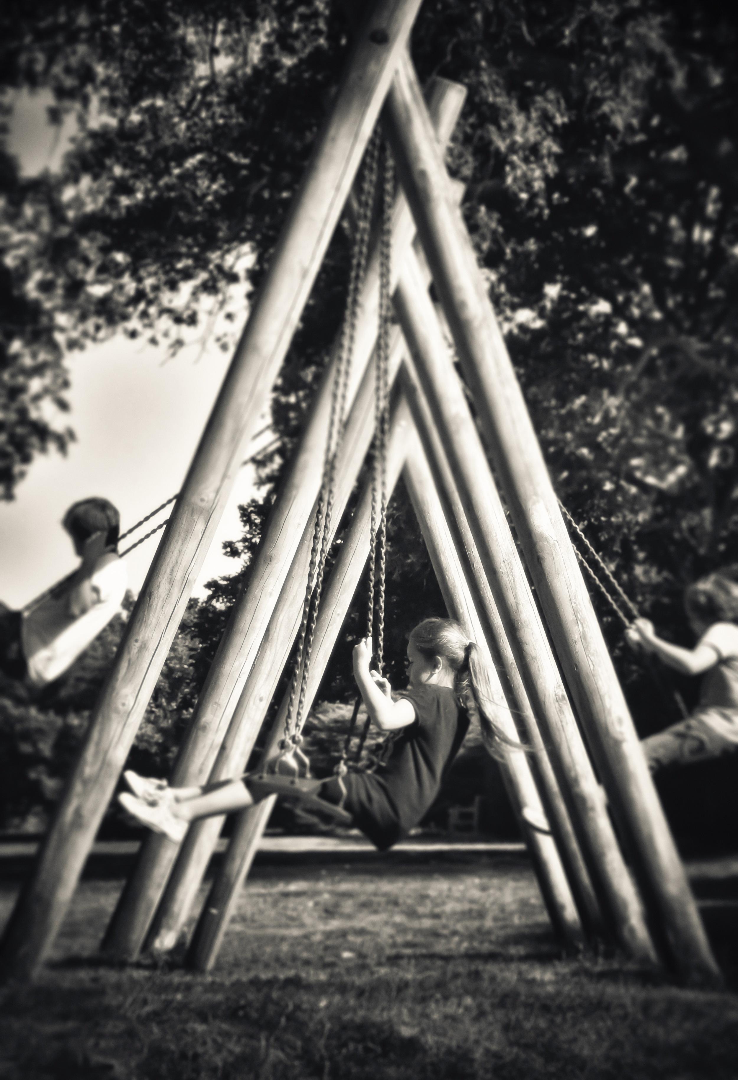 Summer Swings   Parham, near Storrington, UK