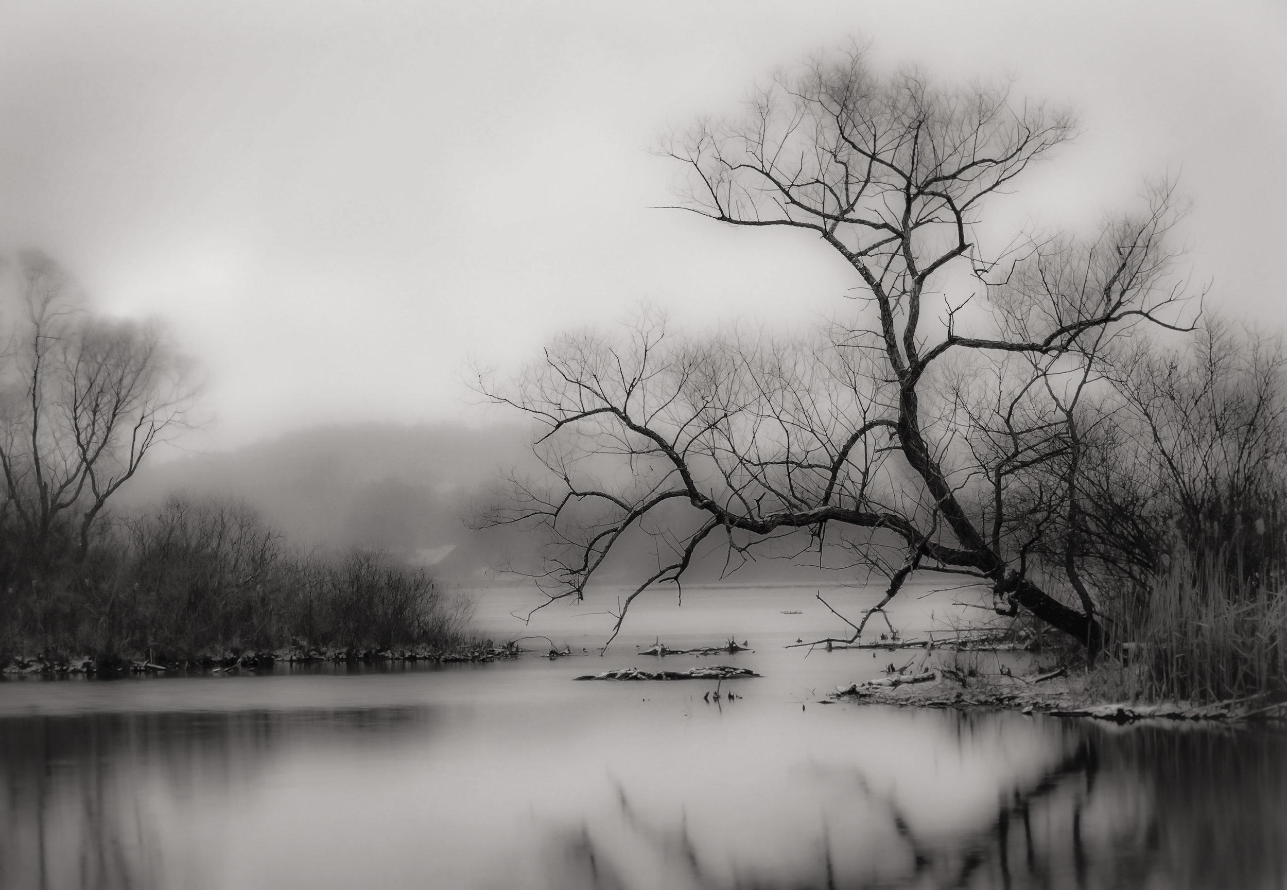 Woodman Pond I   Hamilton, New York