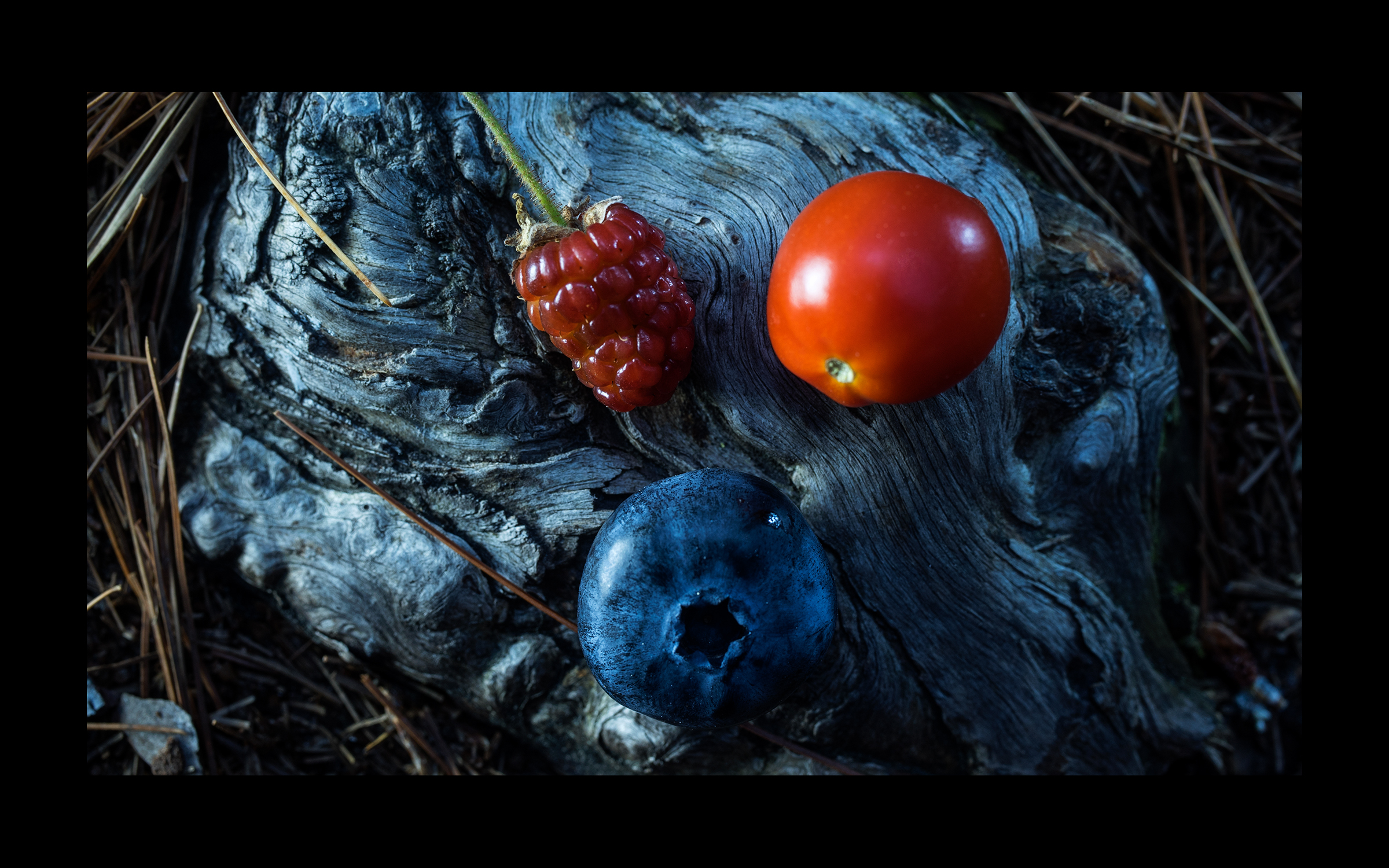 Maine_Colors.jpg