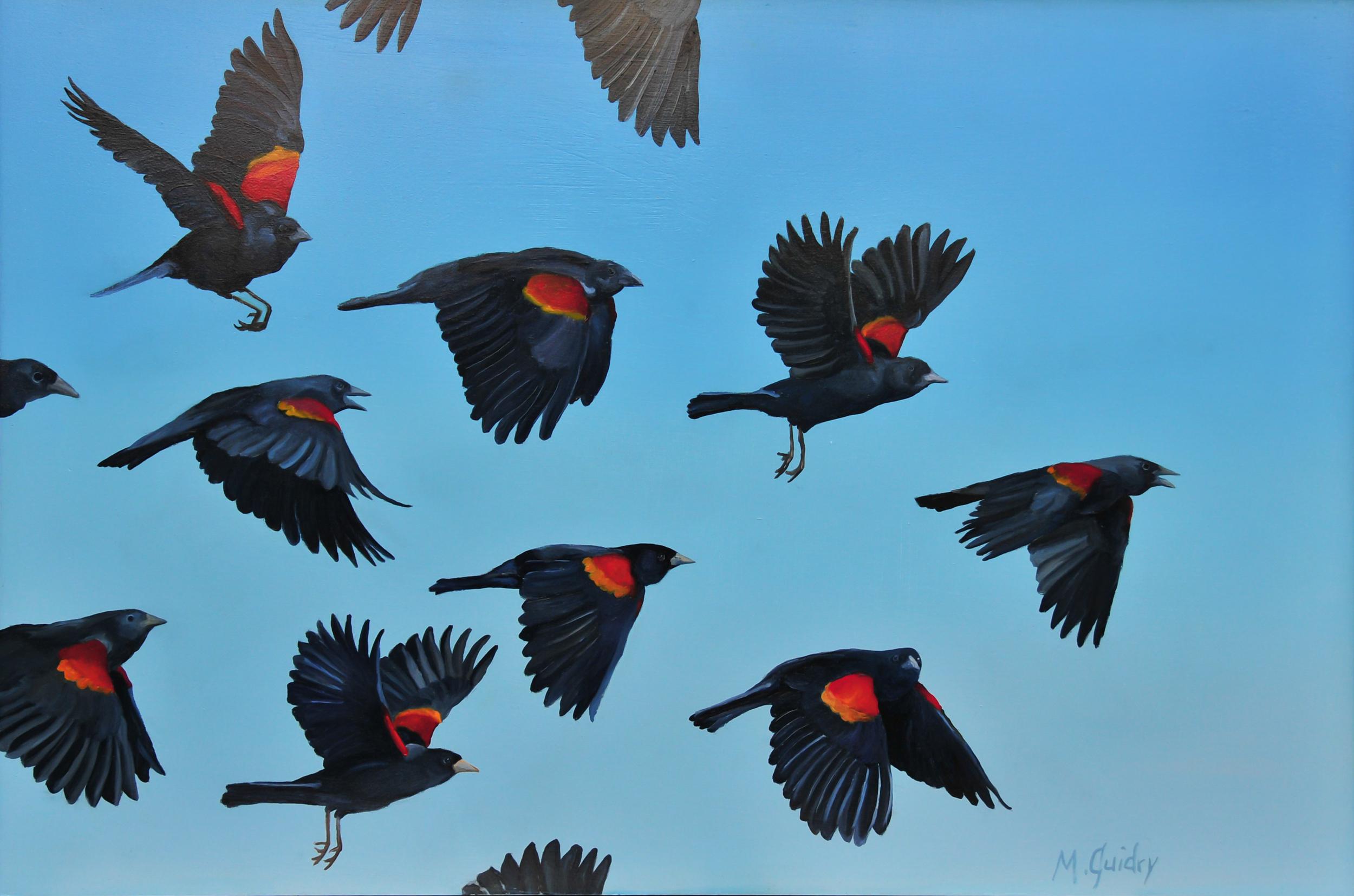 red_wing_blackbird_flock_louisiana_m.guidry_michael_guidry_oil_painting_marsh_new_orleans_artist.jpg.jpg