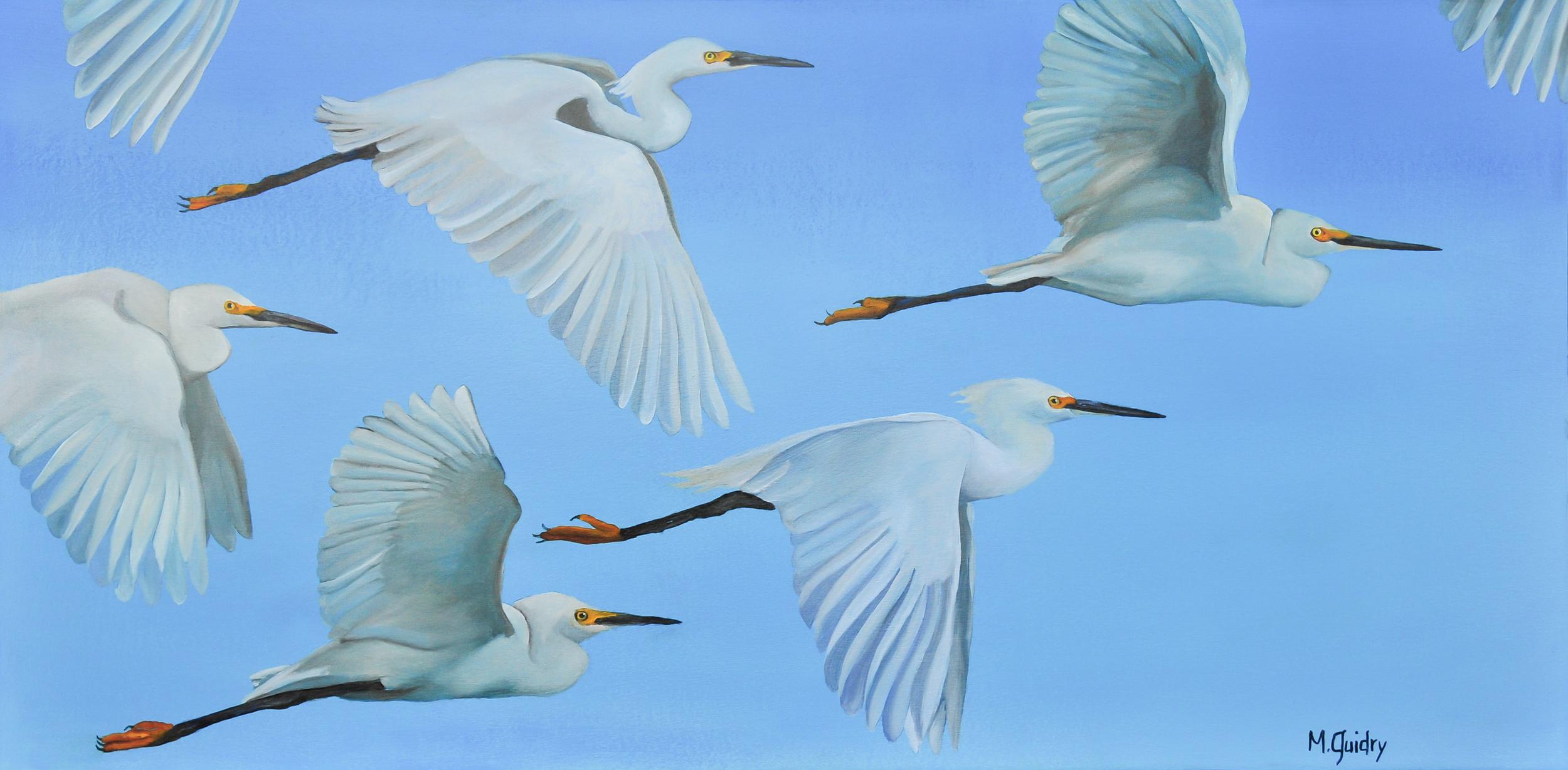 snowy_egrets_flock_louisiana_m.guidry_michael_guidry_oil_painting_marsh_new_orleans_artist.jpg