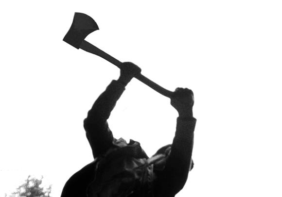 Hamlet's axe