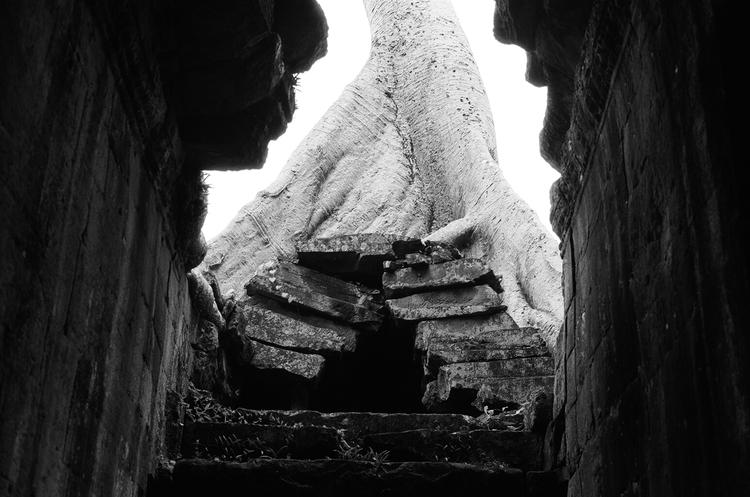 Cambodia trip. Siem Reap near Angkor Wat. Photo by Basil Glew-Galloway.