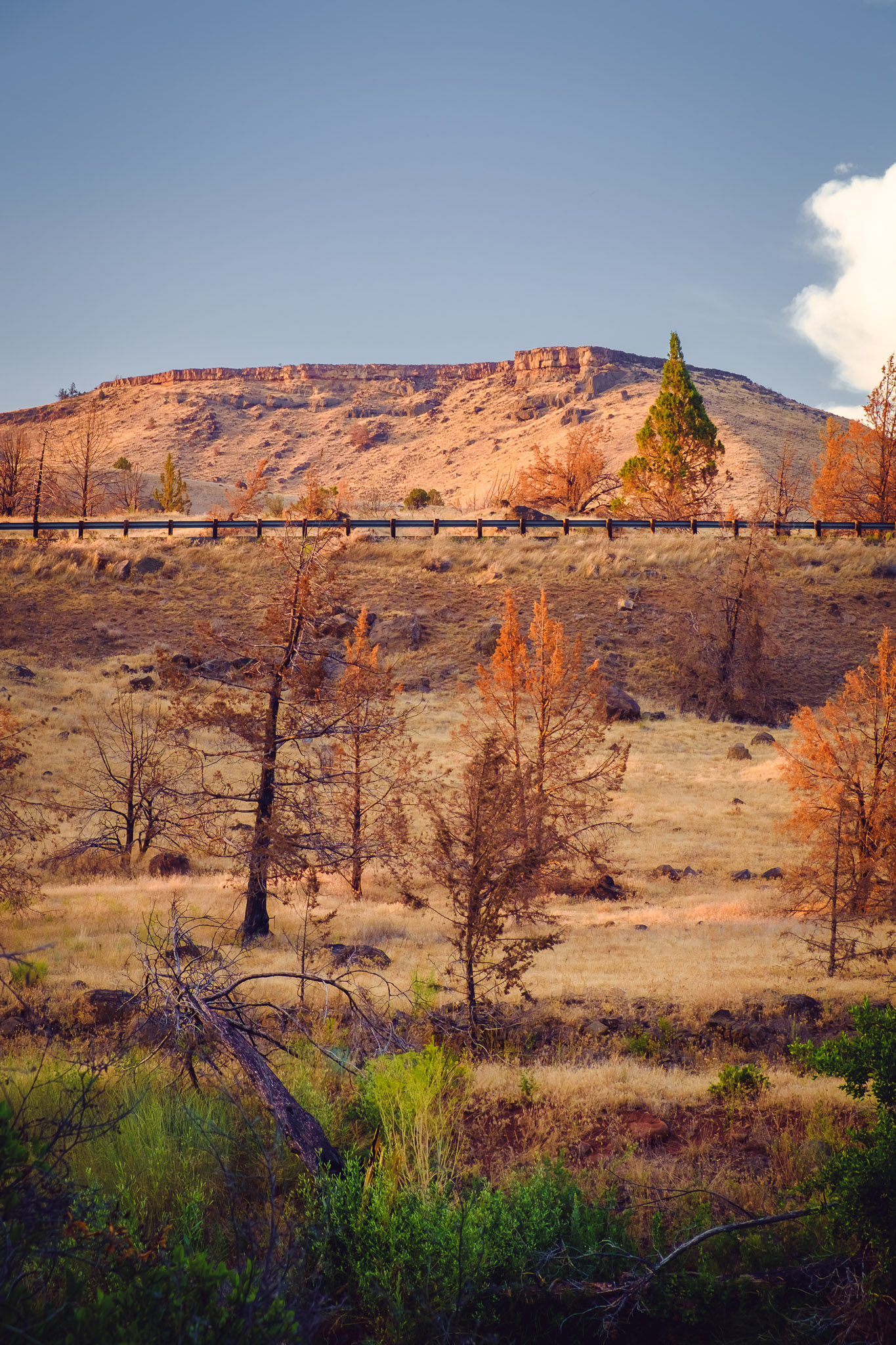 Oregon's high desert colors are beautiful. Warm Spring, OR. Fujifilm XE-1, XF18-55mm @ 55mm, ISO 200, f/8, 1/50.