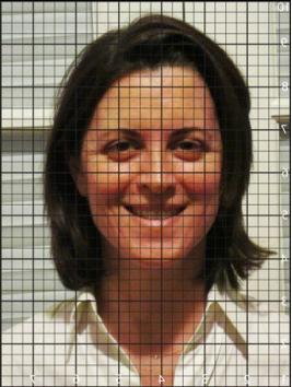 Figure 9: Nikki Photo on the Grid
