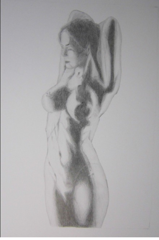 "Figure 16: Waterfall, graphite 19"" x 12"""