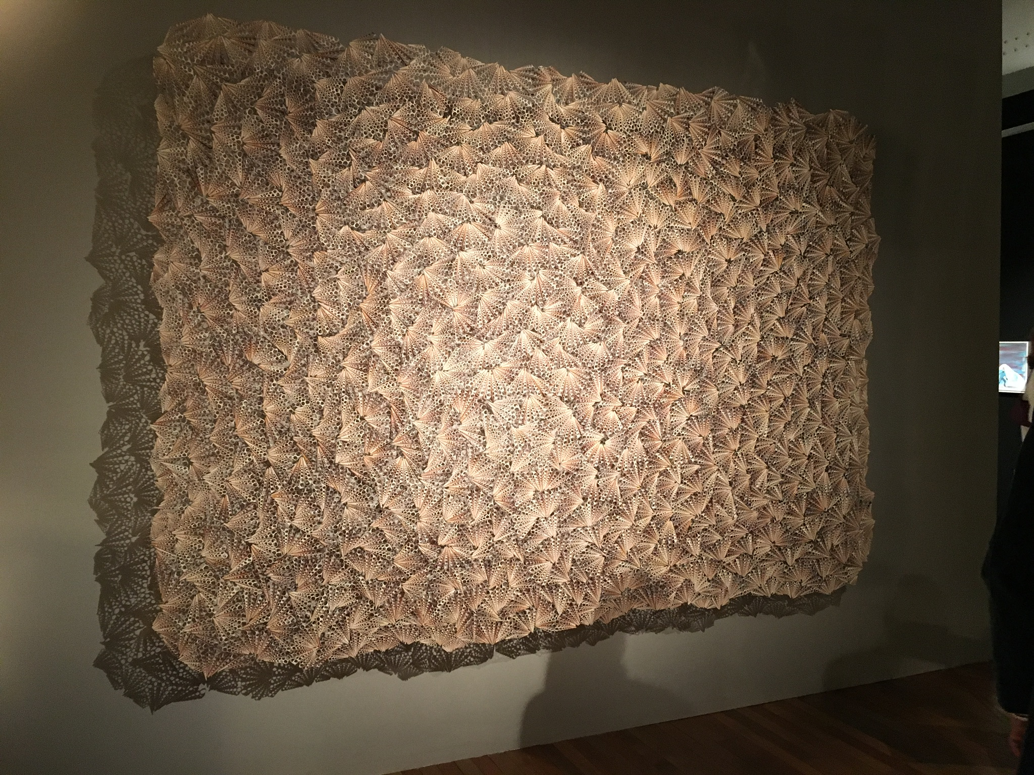 """""""Dreamcatcher"""" by Rowan Mersh (3metres x 2 metres) - £72,000 inc VAT on the stand of A24 Gallery Fumi (Sardinia, Italy). Made from 'farmed' Turritella shells from the Phillippines"""