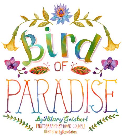 Becca Cahan Bird of Paradise for Baltimore Magazine Print