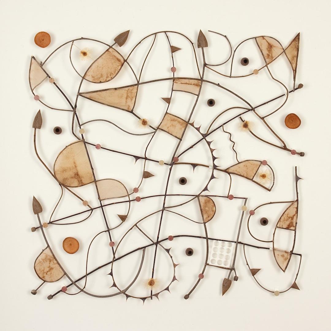 'Native Grid 0911.1' 2011