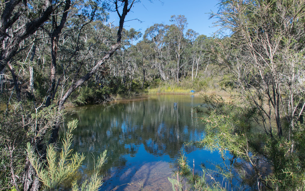 A small lake at the Wild Valley property