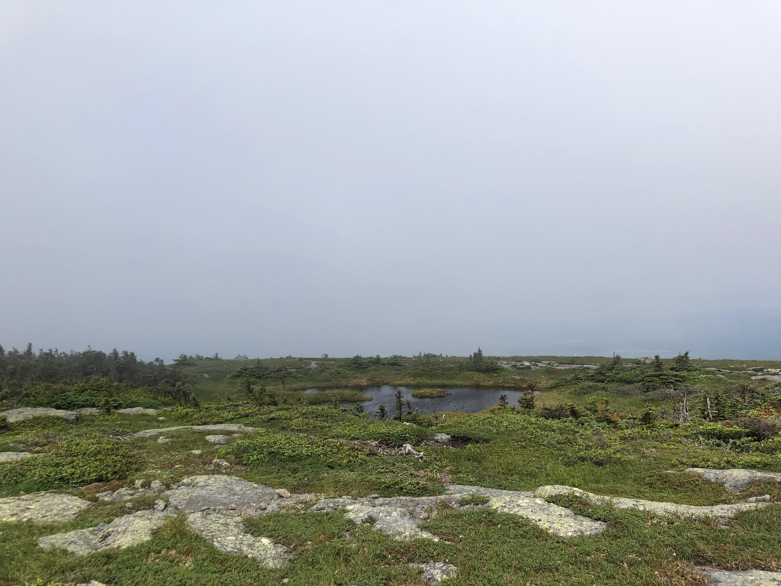 Alpine Pond